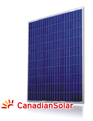 Canadian Solar CS6P-P 265Wp